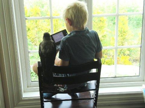 FØLGER MED: Janne overvåket alle Ferdinands aktiviteter. Her ser hun på at seksåringen spiller GameBoy. (Foto: Privat)