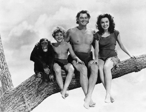 sex og solrik tarzan apenes filmer