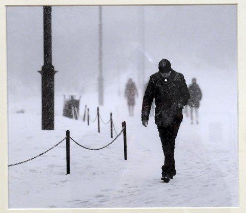 «MANDAG MORGEN»: Dette bildet av Audun Wigen fra Tjøme Fotoklubb er blant de utvalgte til Preus-utstillingen.