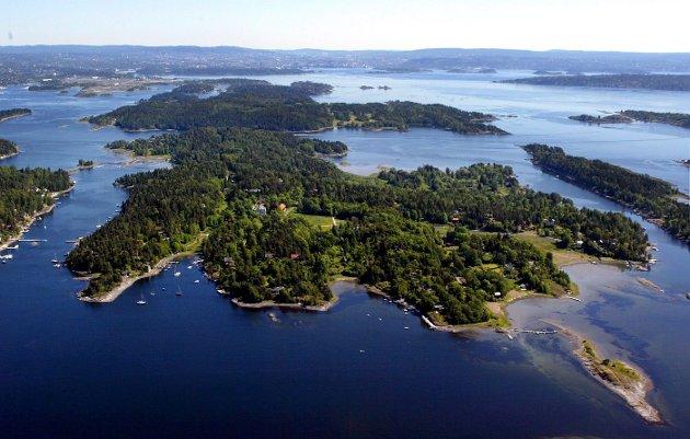 JAKTER PÅ KULTURMINNER: Fylkeskommunen vil starte nye arkeologiske undersøkelser på Brønnøya. Kostnadene må Asker kommune ta. FOTO: KARL BRAANAAS