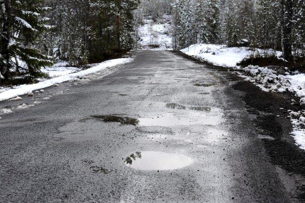 Fylkesvei 96 Lurdalsveien