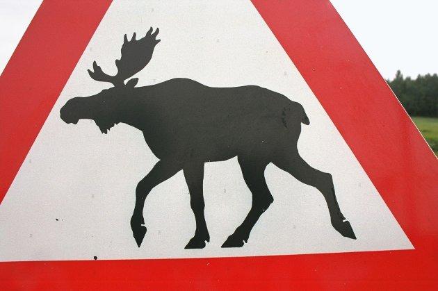 Et elgskilt fikk et ublidt møte med en søppelbil i Hurum.