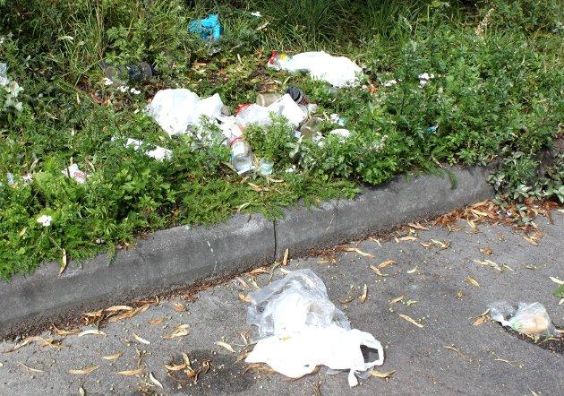 Søppel på parkeringsplassen ved Holmenskjæret er et problem.