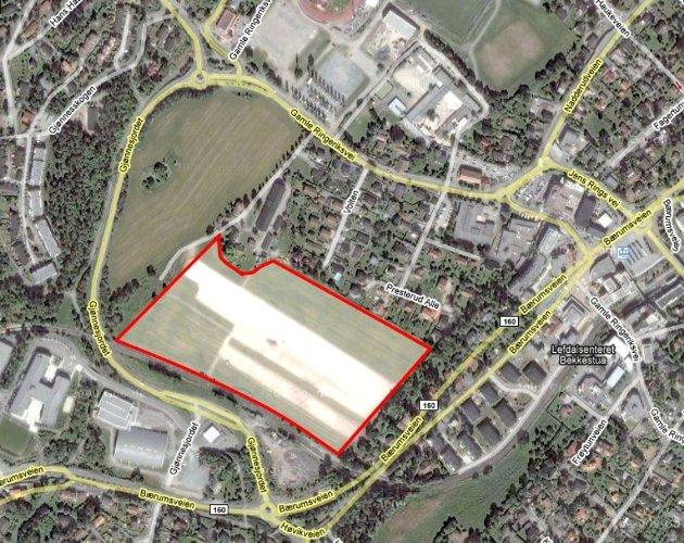 HER ER DET: Det er dette området mot sørvest som skal bli boligområde. På resten av grøntområdet skal det etableres blant annet aktivitetspark.