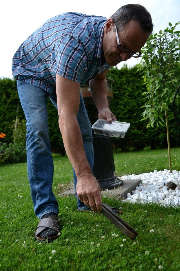 Thom Ekeli Reiersen plukket dagens snegler på et minutt. Foto: Stine Authèn