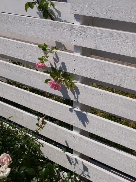 LUFT: En delvis åpen levegg i to lag beskytter mot innsyn, og gir samtidig plass til blomster og planter.