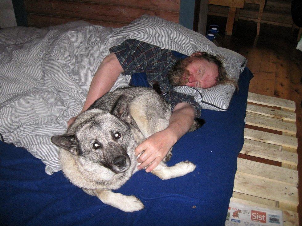 TATT AV ULV: Hunden Wendy (bildet) ble i tidsrommet natt til mandag revet i hjel av en ulv like ved boligblokkene i Lindeberglia. Eier Oddbjørn Rosendal mener hans elghund har hatt maks uflaks, men frykter at et par kan ha etablert seg i området.