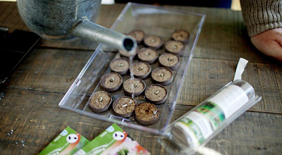 Torvbrikettene fra Nelson Garden er en lur oppfinnelse, mener Arild Sandgren.