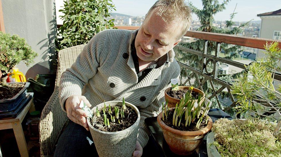 Arild Sandgren har vært opptatt av planter og hagestell siden han var ung.