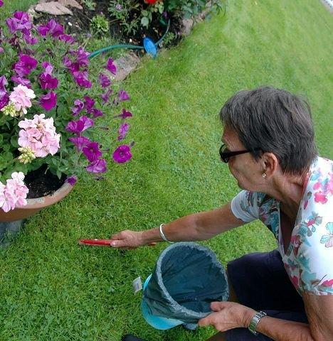 KAMPVILLIG: Liv Aas i Holmsbu vel tar daglig tur i hagen og rundt på friområdene i Holmsbu for å fange snegler. – Om alle er med og gjør en fellesdugnad for å bekjempe brunseglene kan vi oppnå resultater, sier hun.