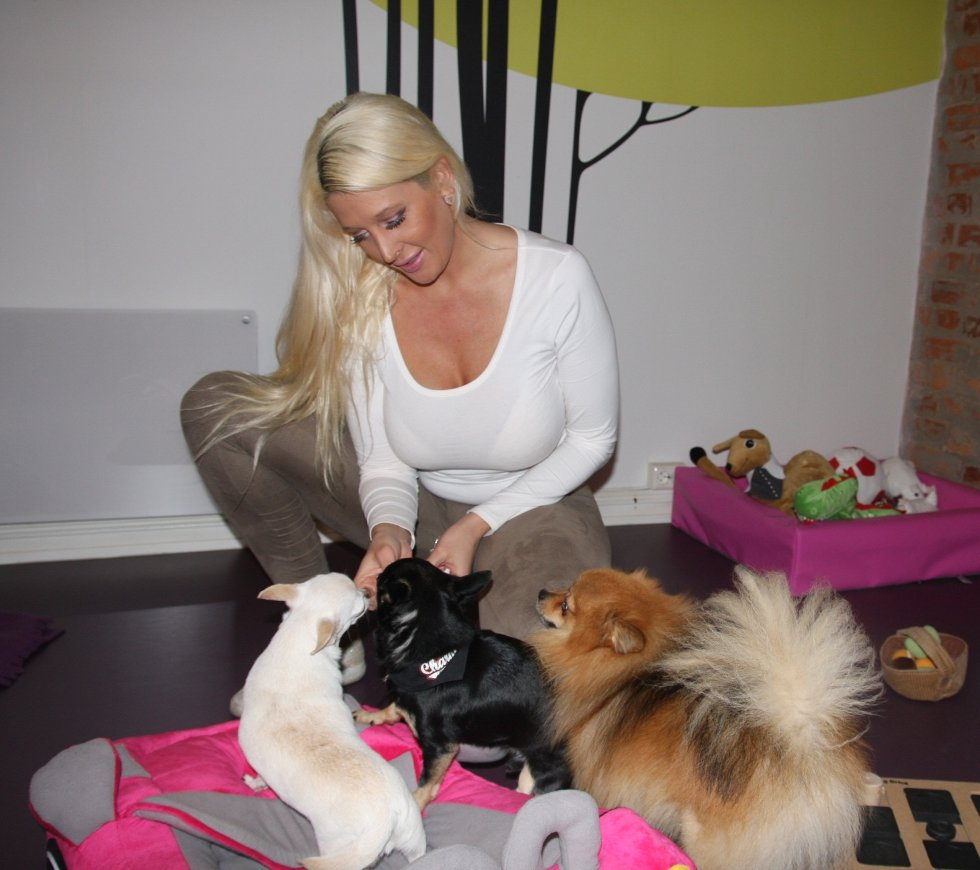 Hundene får mye oppmerksomhet. Både i grupper og individuelt.