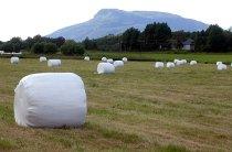 rundballe, landbruk, jordbruk, rundballer