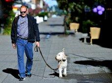 NY FØLGESVENN: Frank W. Githmark har fått en ny følgesvenn i hunden Teodor.