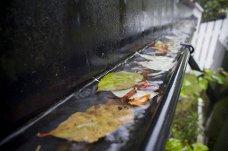 Danner propper: Løv og barnåler kan tette igjen takrennene og forårsake store skader på huset. Foto: Rolf Magnus W. Sæther, Newswire/ANB