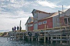 To dansker, en svenske og en nordmann kjøpte i 2004 den gamle butikken i Skibbåtsvær. De ville berge et stykke nord-norsk kulturarv.