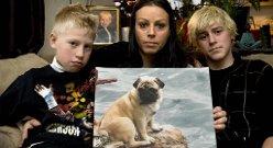 Det var en grusom opplevelse for familien da hunden deres Curly ble påkjørt og drept (27.10.2010).