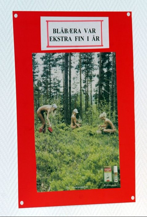 kjekk mann Lillehammer