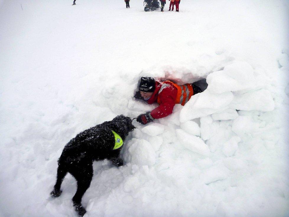 Hundefører Jarle Mjånes frå Norske Redningshunder viste hvor effektiv bruk av hund er i søk.