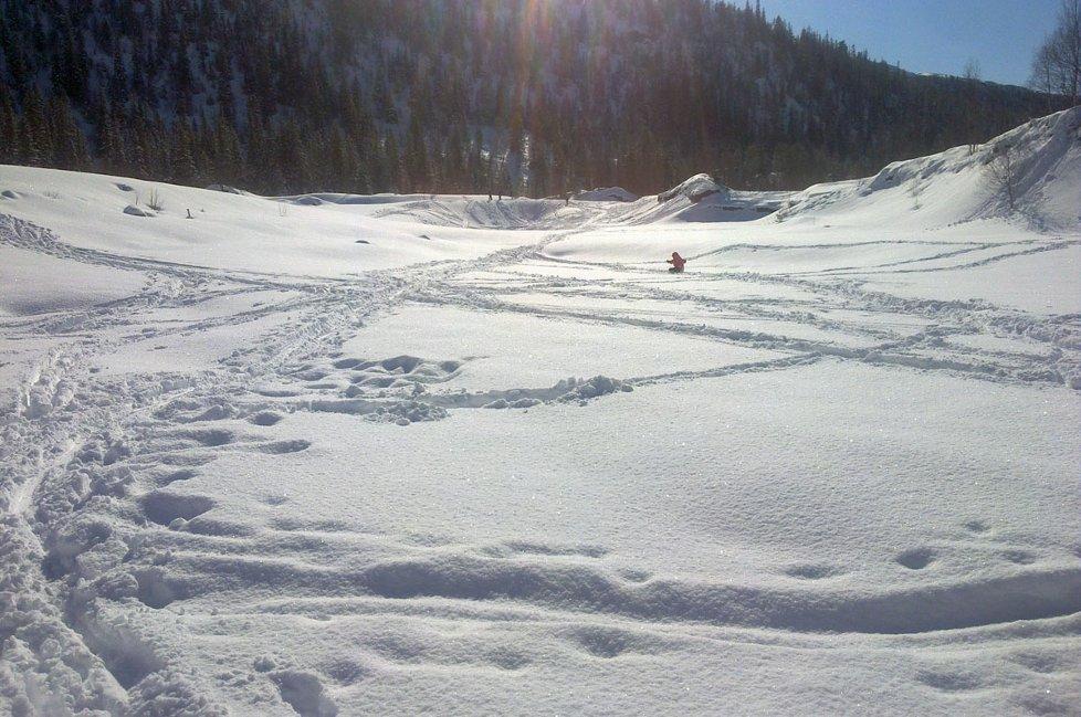 vinter, snø, Leirfjord, ski
