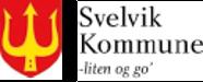Arealplanlegger - Svelvik kommune