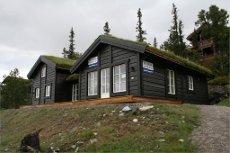 Flott ny hytte med ski in/ski ut ved Gaustatoppen Naturpark. 4 soverom - 2 bad - hems