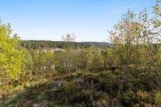 Vinterbro - Romslig tomt. Solrikt og høyt beliggende i barnevennlig og populært område