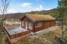 Hytte til Jul, Nesbyen - Hytte ved golfbanen, skiløyper, turterreng og alpinanlegg rett utenfor døren.