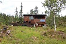Koselig hytte med stor eiet naturtomt!
