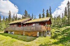 Tuddal - Flott hytte med attraktiv beliggenhet og nydelig utsikt