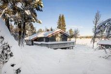 TORPOÅSEN - Flott familiehytte i vakkert turområde. 3 soverom, strøm, vintervei, etc.