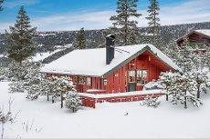Uvdal Alpinsenter - trivelig hytte med ski in/ski ut 740 moh. Flott utsikt!