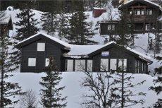 FOR VISNING I HELGEN RING 93080555! Lekker ny hytte med ski in/ski ut ved Gaustatoppen Naturpark. 4 soverom - 2 bad - hems - bilvei helt frem.