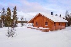 Golsfjellet - Tretteskogane - Fin familiehytte med 4 soverom og gapahuk på tomten.