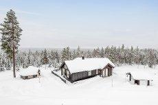 Furutangen: Flott hytte i nydelige Furutangen med kort vei til skitrekk! 3 soverom og hems. Grillhytte.