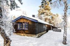GOLSFJELLET / HAMMARTJERN - Trivelig hytte beliggende i lite hyttefelt. Vei sommer og vinter, strøm, 3 soverom