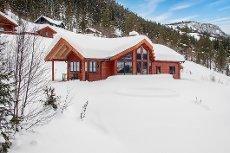 Velholdt og meget pen hytte med ski inn og ski ut til Ål skisenter. Utsikt, usjenert og gode solforhold