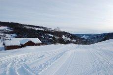 Nyere og meget flott hytte med ski in og ut i Ål skisenter. Stor og usjenert terrasse med jacuzzi og nydelig utsikt.