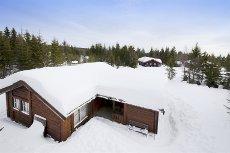 GÅSBU - HAMAR - Pen hytte med 3 sov, 2 bad, samt helårsveg i fine omgivelser.