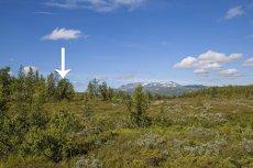 Tomt med flott utsikt mot Hallingskarvet - attraktiv beliggenhet i Kikut Fjellgrend II