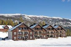 Uvdal Alpinsenter - Lekker leilighet rett nedenfor stolheisen, ski inn/ut.