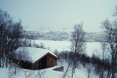 VISNING 7/3: Rauland ved Møsvatn. Hardangerviddas terskel, roens palass, hodets rasteplass