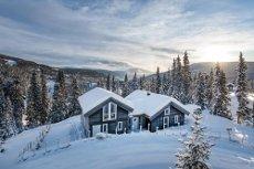Lys, delikat og tiltalende hytte på Kvitfjells Vest. God kvalitet, funksjonelle og pratkiske løsninger og flott utsikt!