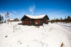 Øyer-Lisetra - Lisetra - nyere, flott hytte med stor tomt på Lisetra