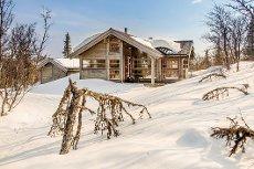 Hytte i Knutsskarfeltet på Holsåsen, 1.010 m.o.h.