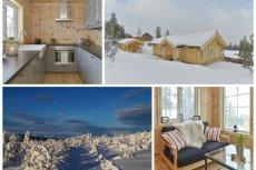 RENÅFJELLET: Nyoppført familiehytte med gode kvaliteter og en praktfull utsikt. Nærhet til fjellområder og alpinbakke.