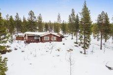 Renåfjellet - Flott hytte i nydelige naturomgivelser - Alpint - Langrenn
