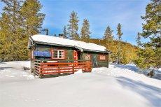 Koselig hytte på Vikerfjell ved Lykkrosmyra/Vikerkoia.