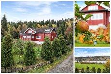 Ytre Enebakk | Spennende fritidseiendom med boligstandard | Tomt på 5249 kvm | Utsikt over vågvannet | Båtplass