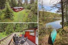 BÅSTAD - Idyllisk hytte i skogskanten med stor tomt -Båtplass v/Stiklatjern-Parkering på tomt-Usjenert-17kvm terrasse