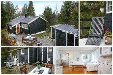 Båstad - Familievennlig hytte i trivelig skogsterreng med bilvei / strøm / vann - 50 minutter til Oslo